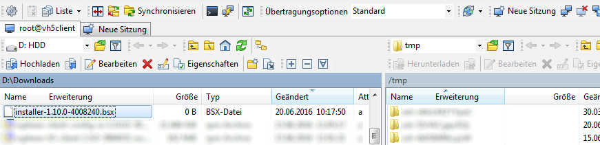 vSphereH5Client_Update1.10_000002
